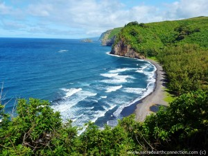 Pololu-beach-Kahala-forest-Hawaii
