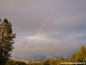 Alaska Rainbow sign